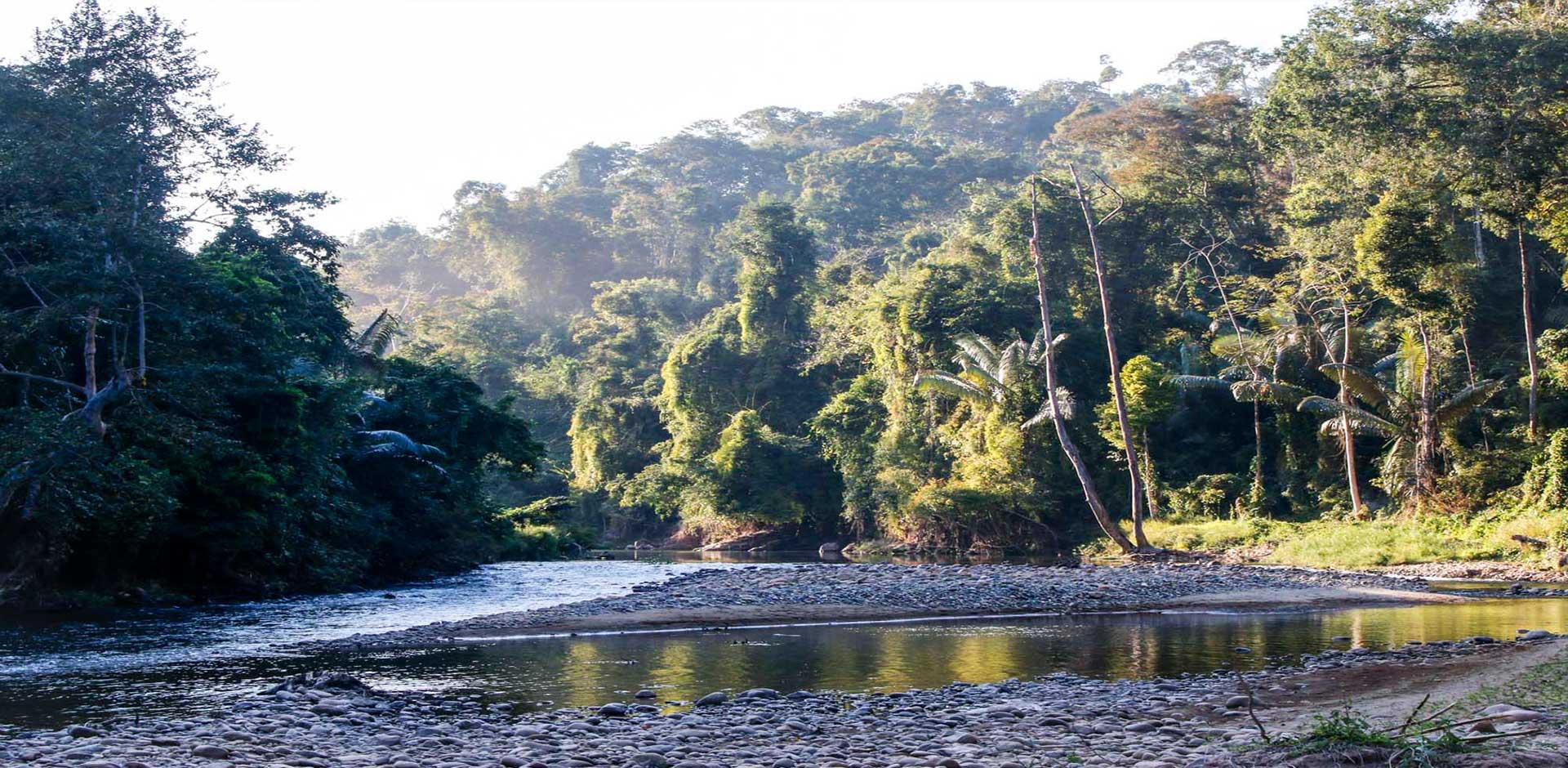 Nam Et-phou Louey National Park