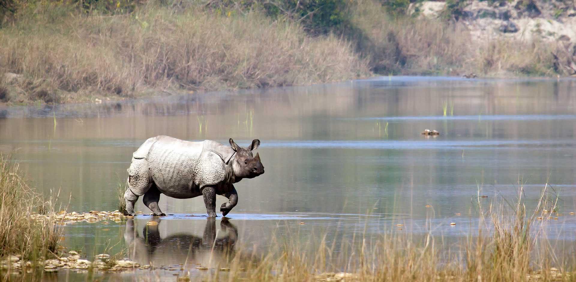 Bardia National Park