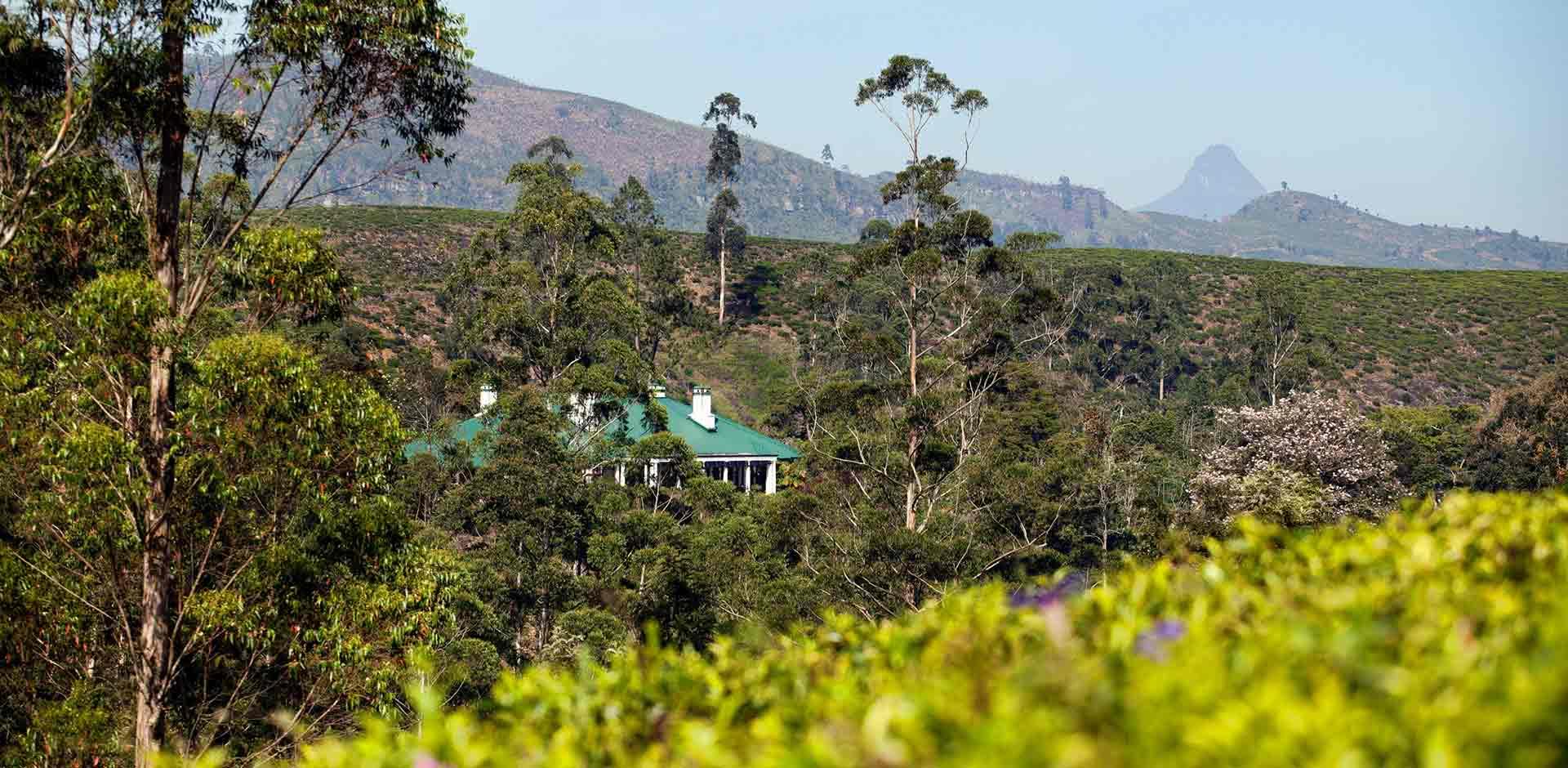 Bogawantalawa Valley