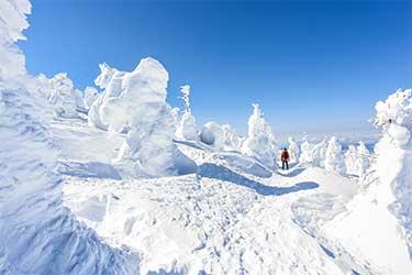 Winter Fun and Powder Chasing Through Tohoku
