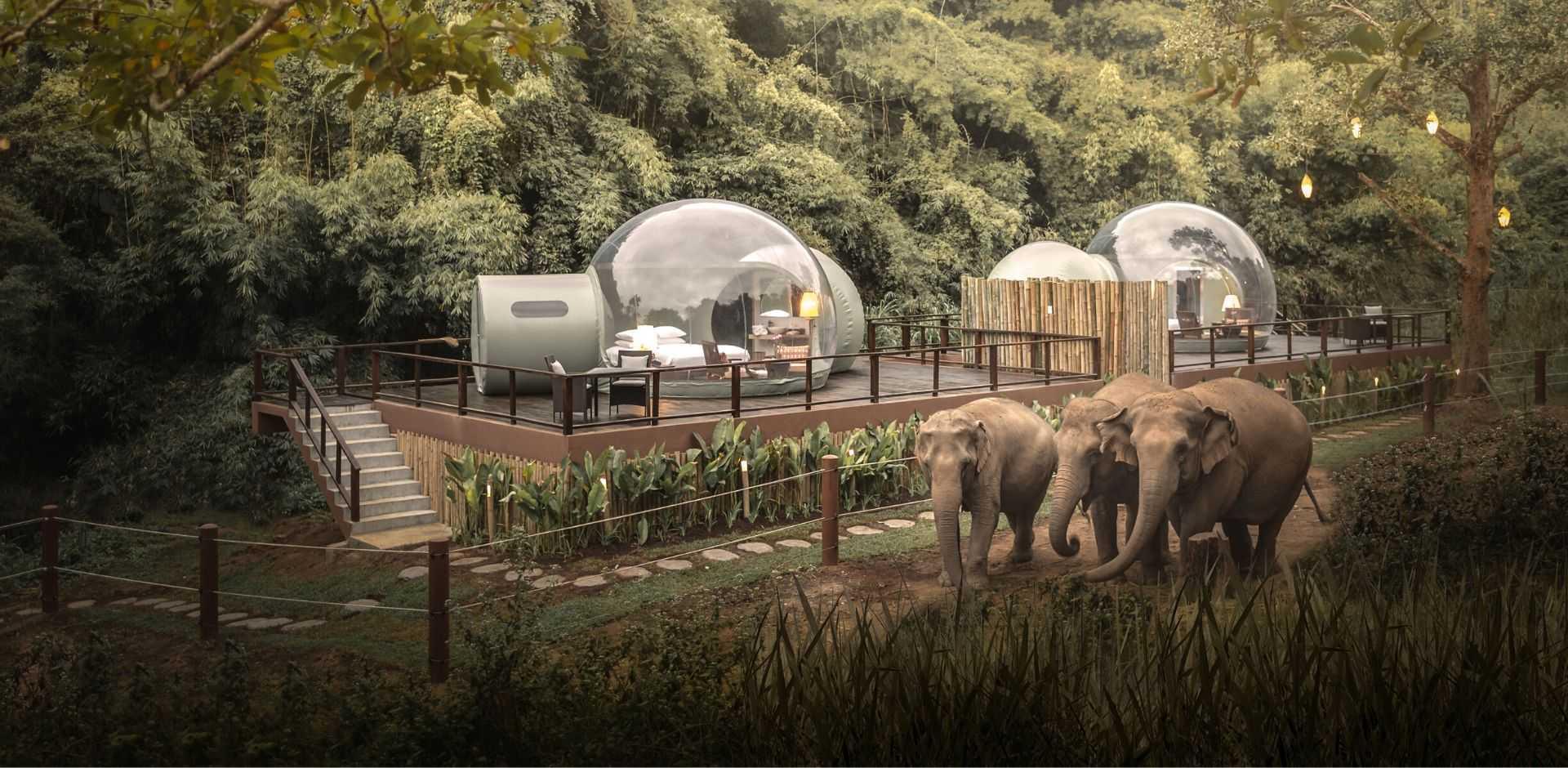 Anantara Golden Triangle Elephant Camp & Resort   Chiang Rai Thailand Luxury Hotels Resorts   Remote Lands