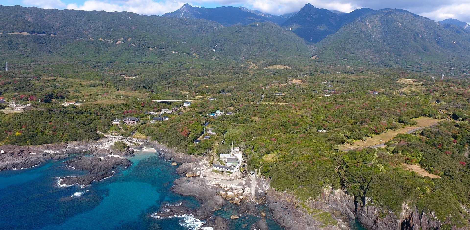Yakushima Island
