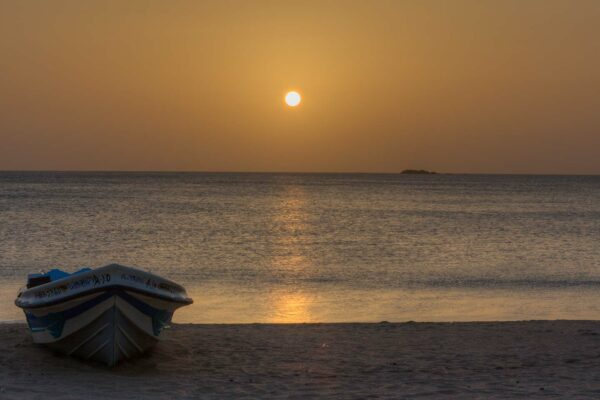 A Whale of a Time in Trincomalee