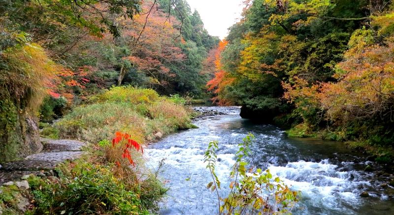 Beautiful scenery in Kaga's Kakusenkei Gorge