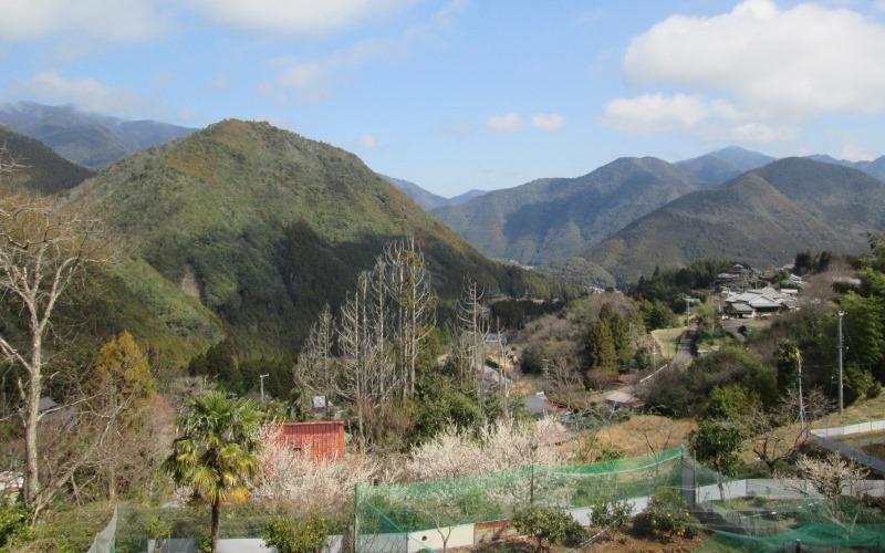 Beautiful views on the Kumano Kodu hike