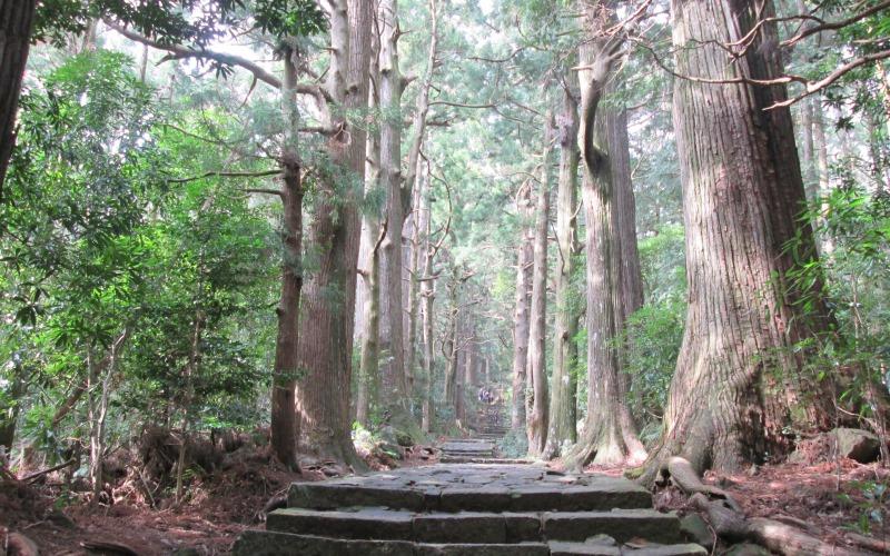 Daimonzaka Slope