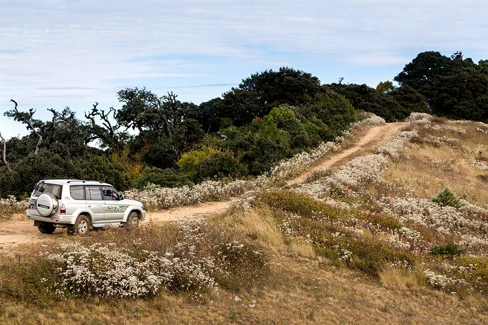 Our 4×4 on the summit of Mt. Victoria, which reaches 10,016 feet about sea level.