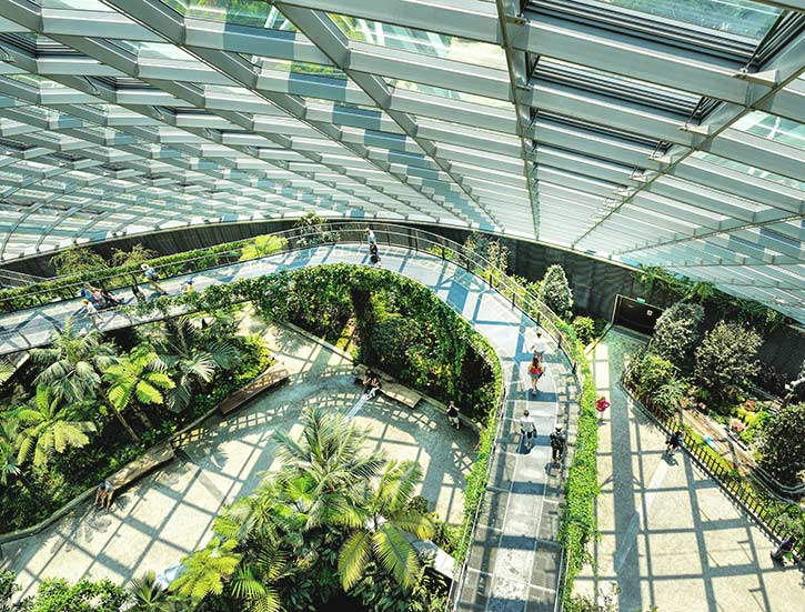 The majestic Cloud Forest Dome which is part of Gardens by the Bay in Bayfront, Singapore