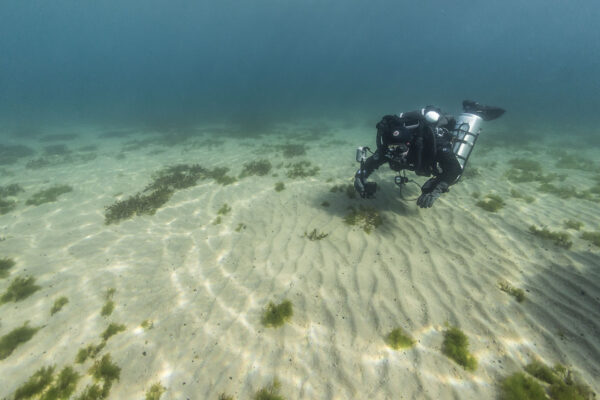 3 Remarkable Freshwater Diving Destinations in Asia
