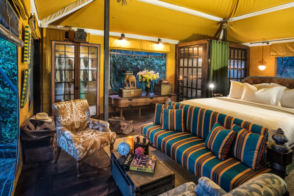 How Luxury Camps are Saving the Cardamom Mountains
