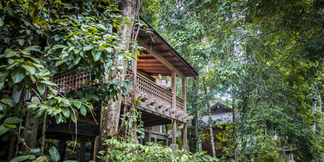 Why You Should Be Excited About The Datai's Reopening in Langkawi