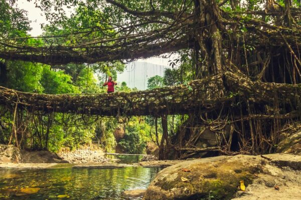 A Nature Lover's Guide to Meghalaya
