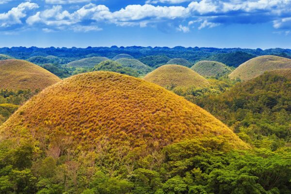 Giants and Blood Oaths: Delving into Bohol's History