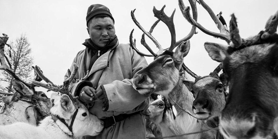TSATAAN: The last reindeer tribe of Mongolia