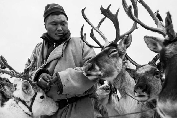 TSATAAN: The last reindeer tribe of Mongolia