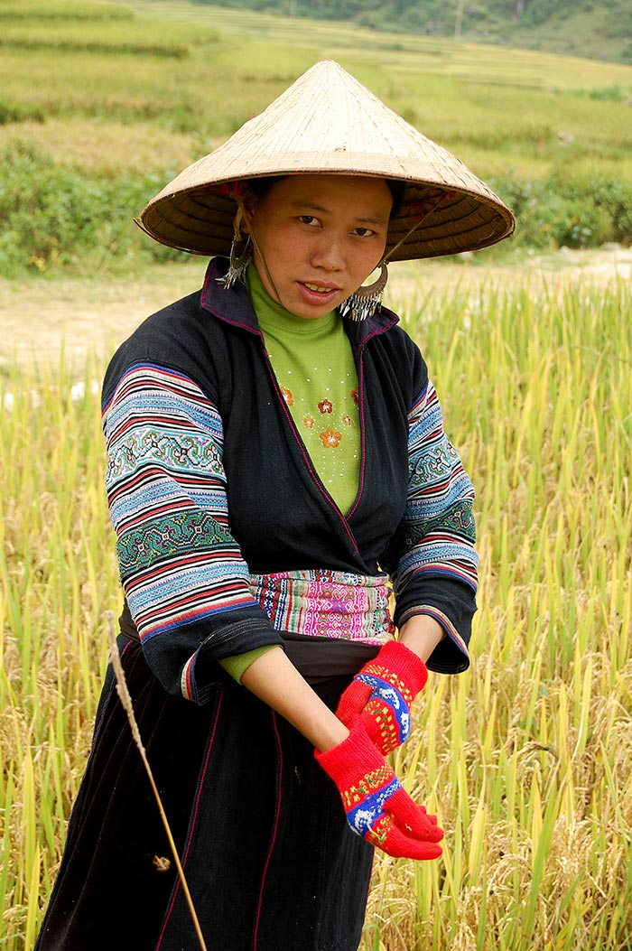 A Black Hmong woman in her rice field.