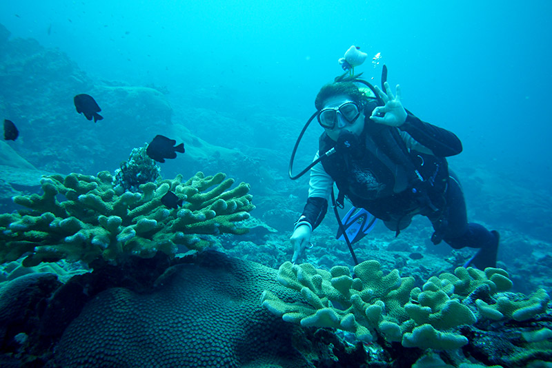 AOK! As I glide past plentiful coral in the Similans.