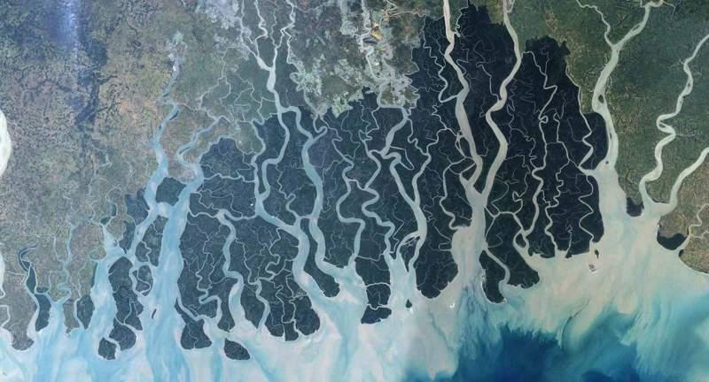 Aerial view of the Sundarbans, Bangladesh