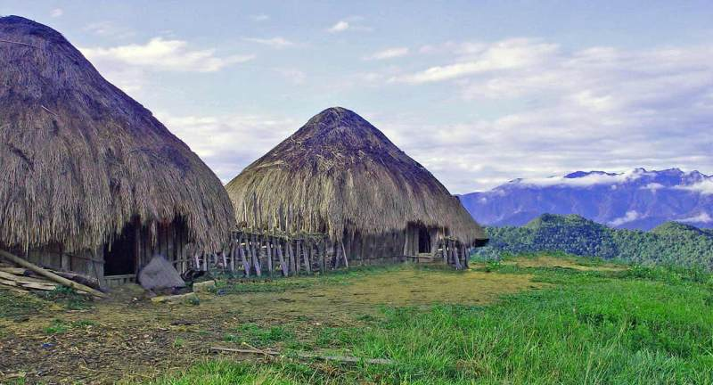 Traditional straw houses, Papua
