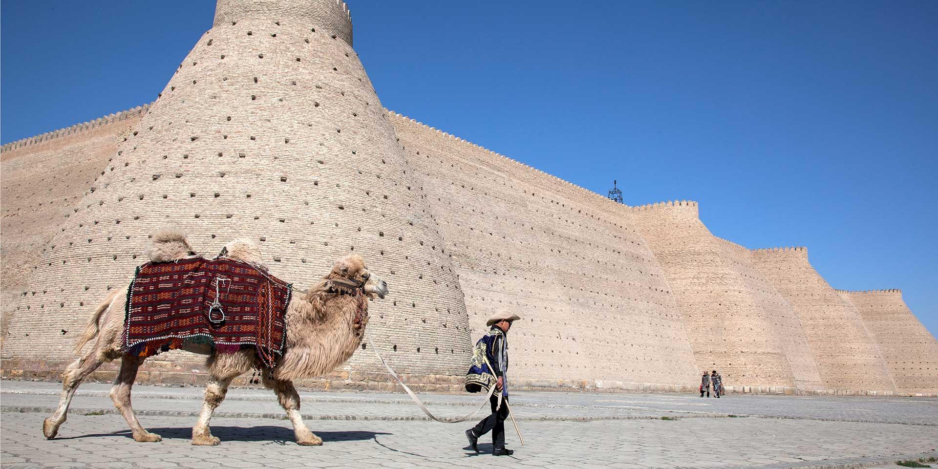 Bukhara's Mosques, Markets & Madrassas