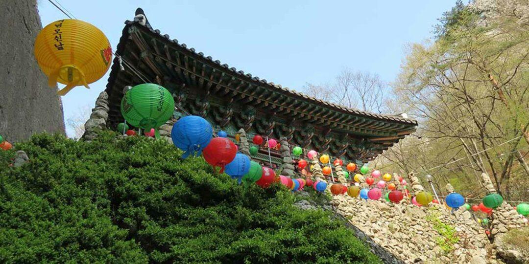 My Brilliant Korea: Cherry Blossoms & Martial Arts