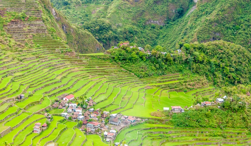 """The """"Eighth Wonder of the World"""" - Banaue's rice terraces"""