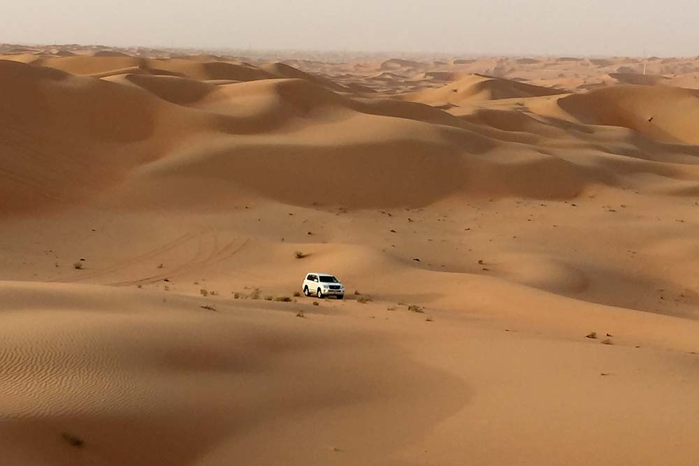 Dune bashing near Qasr Al Sarab.