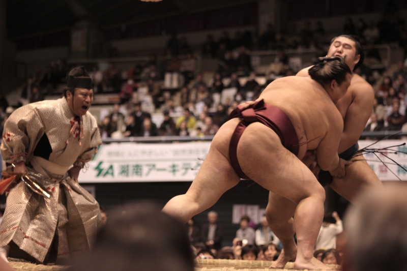 The power of Japan's sumo wrestlers is best experienced at ringside