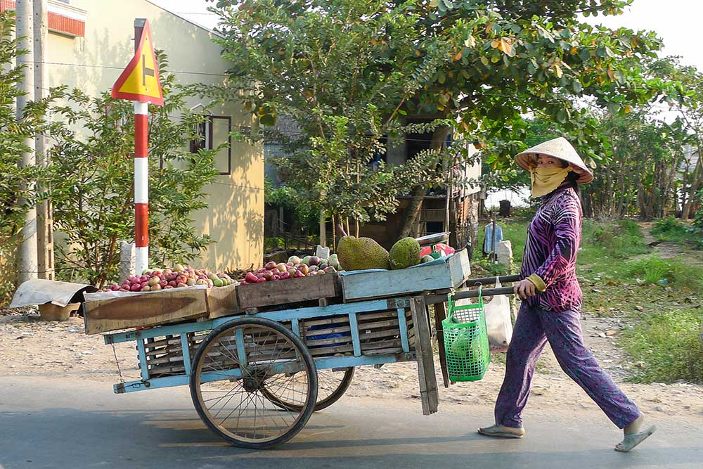 A woman pushing her vegetable cart in the Cham village