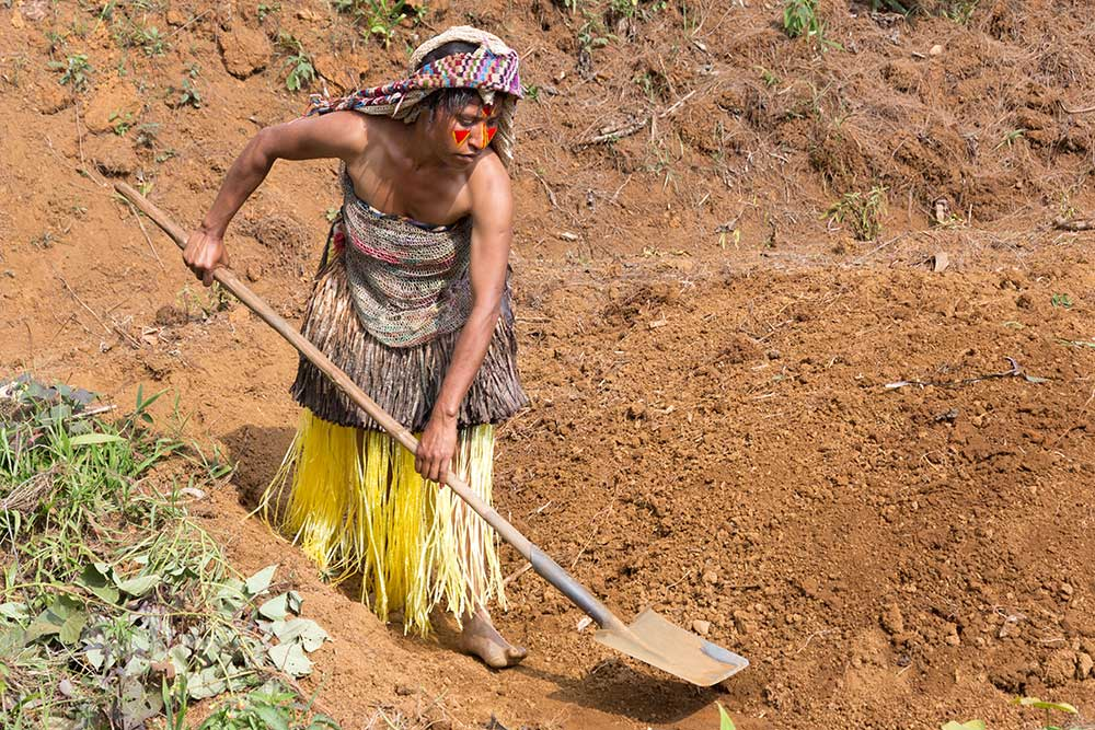 A Huli woman planting sweet potatoes, one of the staple foods in PNG.