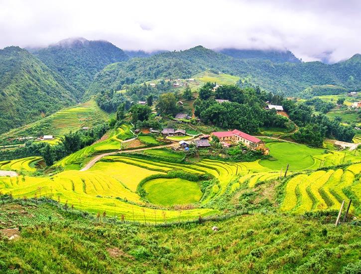 Landscape view of rice terrace in Sapa,Vietnam.
