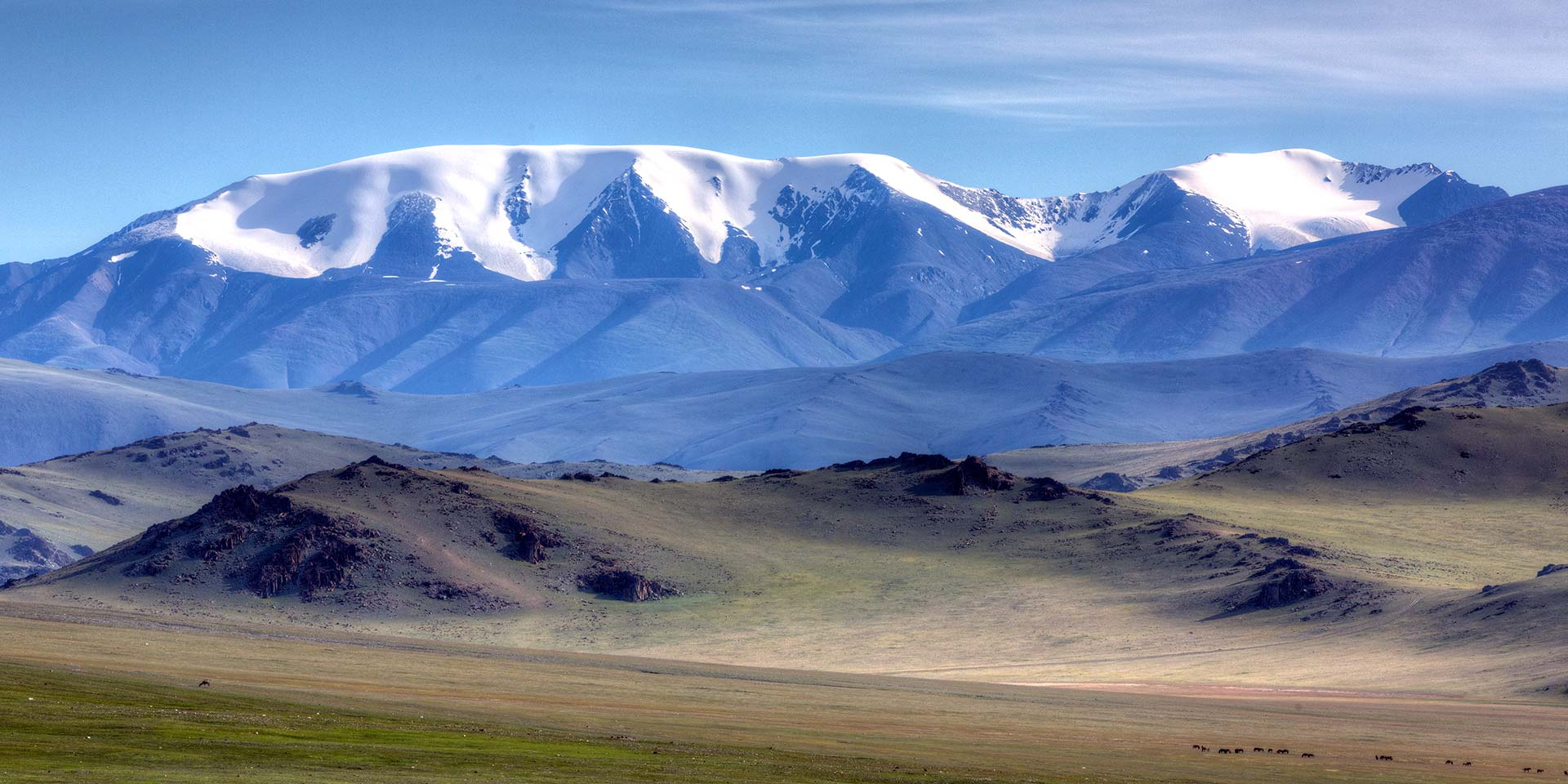 Cutting the Cord: Finding Peace in the Mongolian Altai