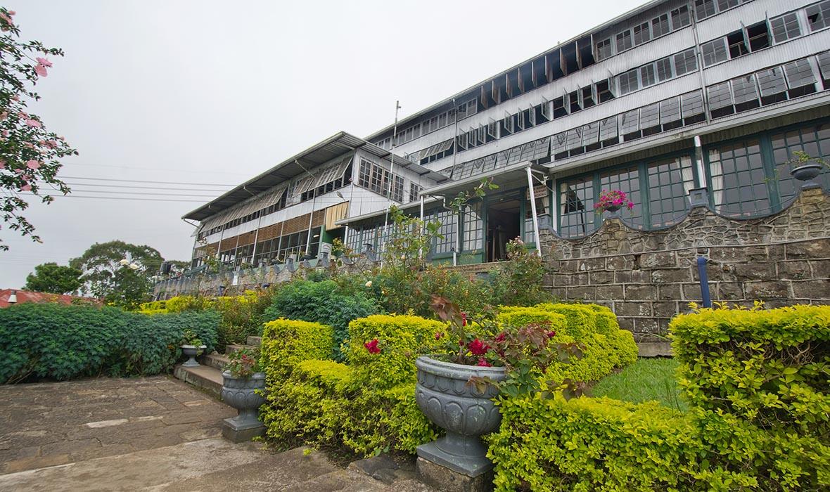 lipton factory