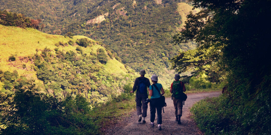 Fascinating Places to Hike in Sri Lanka