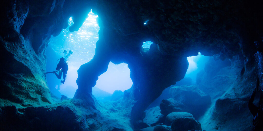 3 Very Good Reasons to Go Diving in Okinawa this Summer