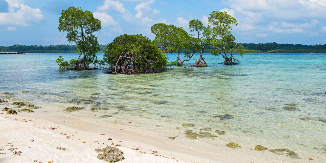 India's Slice of Southeast Asia: 5 Reasons to Go to the Andaman Islands