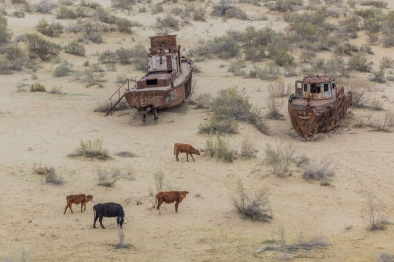 The abandoned desert ships of the Aral Sea disaster.