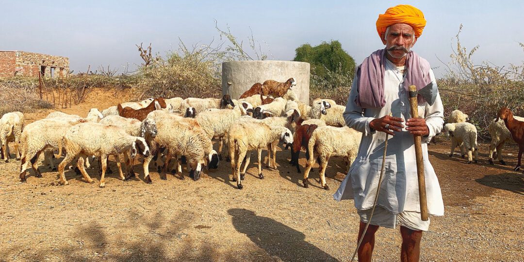 Pushkar Charm: The Rajasthan Oasis Without the Camel Fair