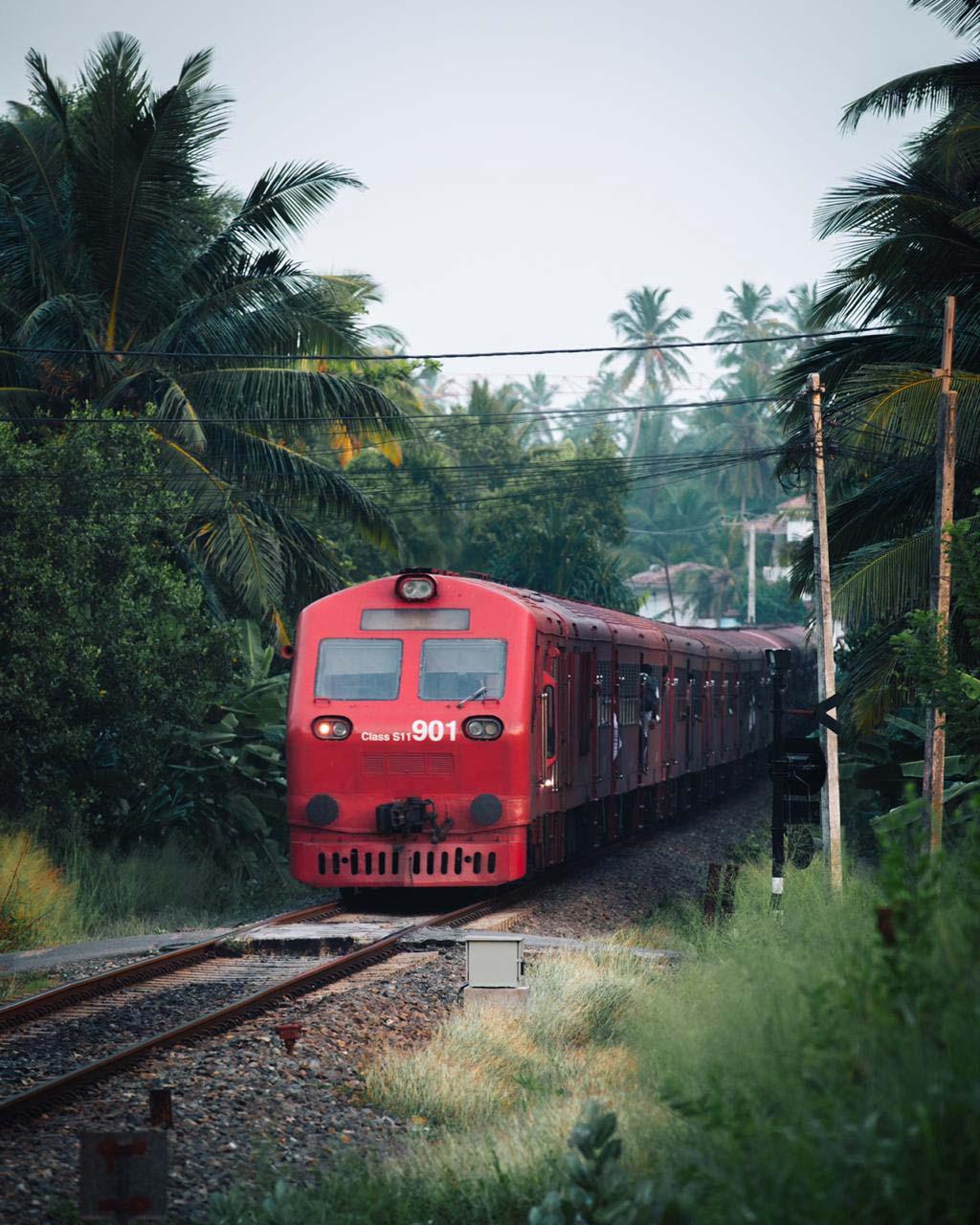 SriLanka-collage-4