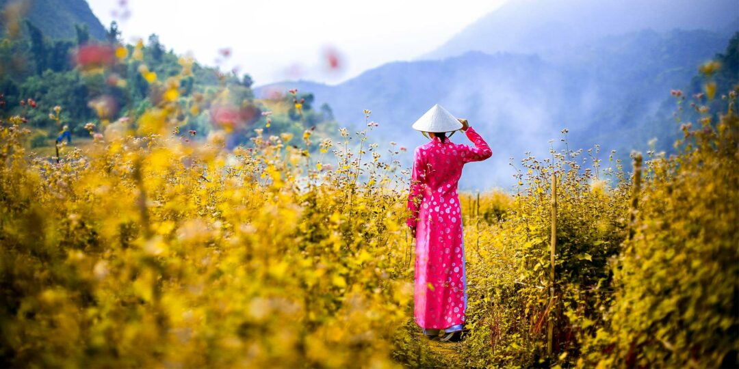 Ao Dai: A Short History of Vietnam's Most Popular Dress